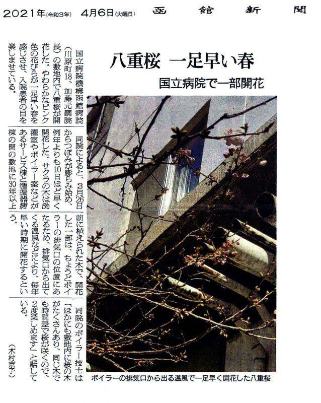4/6の函館新聞に当院の記事が掲載されました